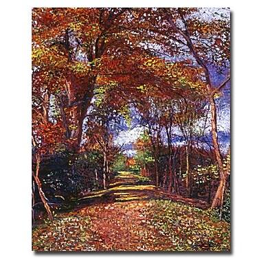 Trademark Fine Art 'Autumn Colored Road'