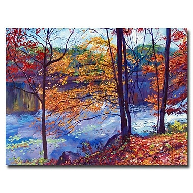 Trademark Fine Art 'Falling Leaves'