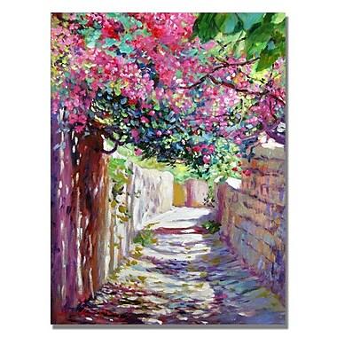 Trademark Fine Art 'Shady Lane Greece'