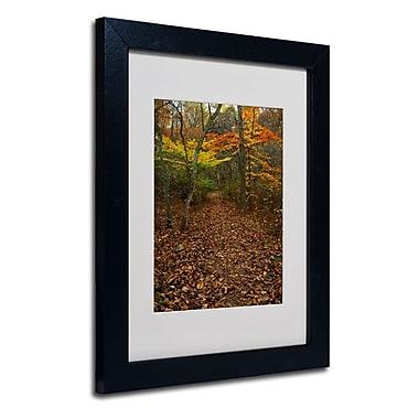 Trademark Fine Art 'Late Autumn Hike'