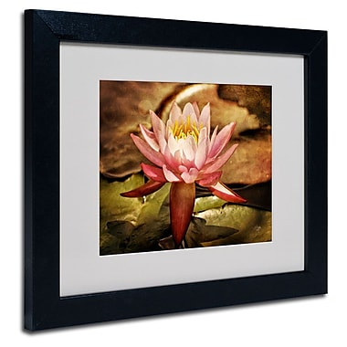 Trademark Fine Art 'Magic Lily'