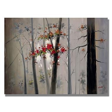 Trademark Fine Art 'New Morning'