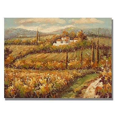 Trademark Fine Art 'Hillside Cottage'