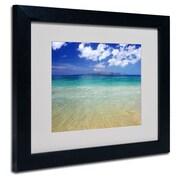 Trademark Fine Art 'Hawaii Blue Beach'