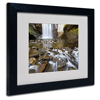 Trademark Fine Art 'Looking Glass Falls'