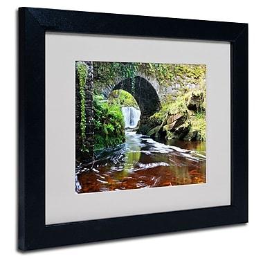 Trademark Fine Art 'Lush River'