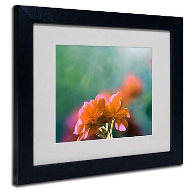 Trademark Fine Art 'Flowers & Sun'