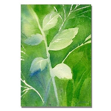 Trademark Fine Art 'Greenery'