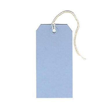 JAM PaperMD – Étiquettes pour cadeaux avec ficelle, moyennes, 4 3/4 x 2 3/8 po, bleu poudre