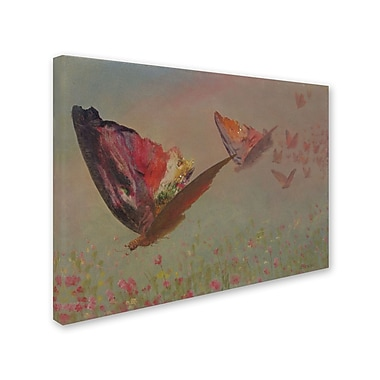 Trademark Fine Art 'Butterflies With Riders'