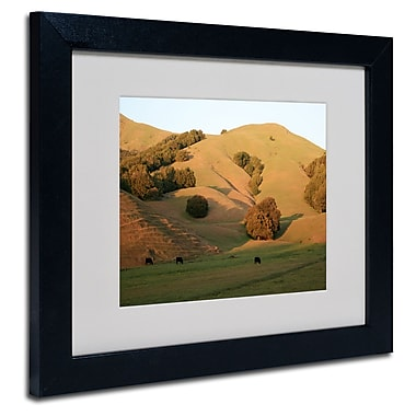 Trademark Fine Art 'Red Hills Flanders'