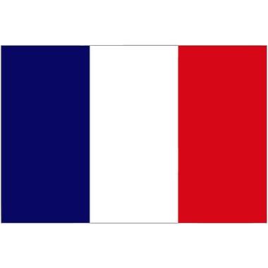 International Flag - France