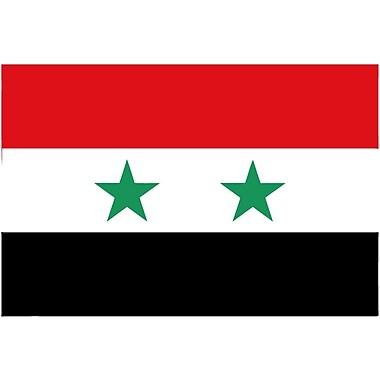 International Flag - Syria