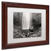 "Trademark Pierre Leclerc White Matte W/Wood Frame ""Multnomah BW"" Arts"