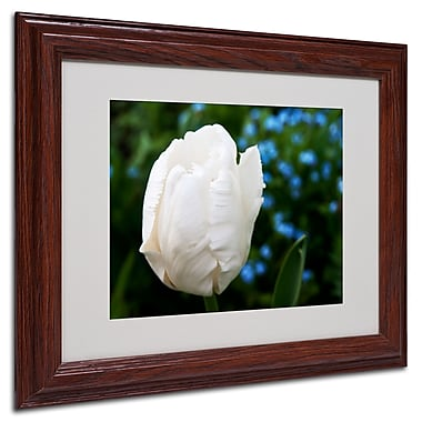 Trademark Kurt Shaffer White Matte With Wood Frame