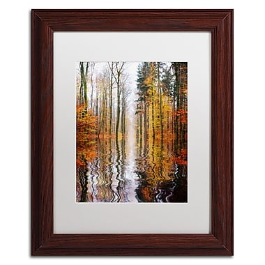 Trademark Philippe Sainte-Laudy White Matte With Wood Frame