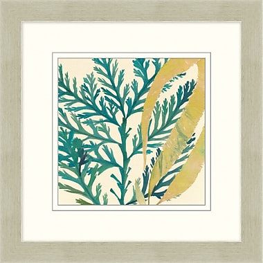 Sea Medley Framed Art, 24