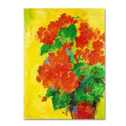 "Trademark Fine Art SG5706-C-GG ""Geraniums Against Yellow"" by Sheila Golden Frameless Art"