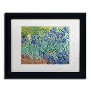 "Trademark Fine Art BL0317-B-MF ""Irises, 1889"" by Vincent van Gogh Framed Art, White Matted"