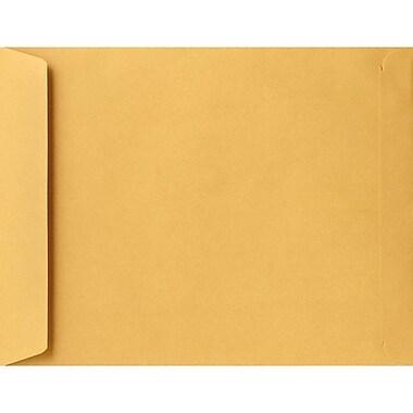 Lux Jumbo Envelopes