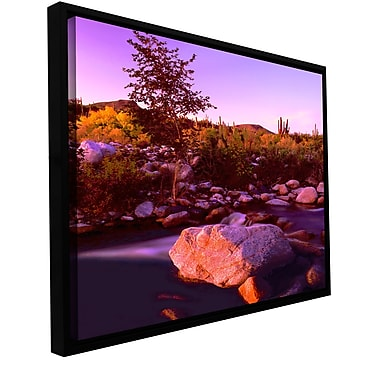ArtWall 'Deer Creek Evening' Wall Art