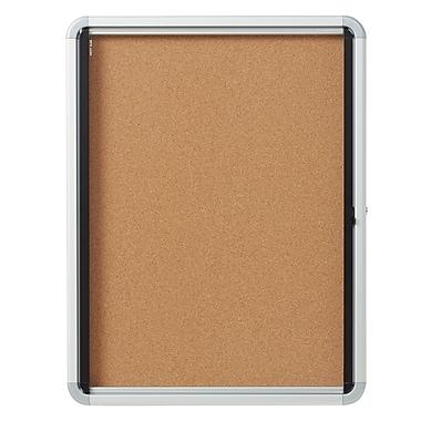 Euro Frame Enclosed Cork Board Swing Door, 4-Sheet