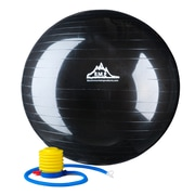 Black Mountain 2000 lb Static Strength Exercise Stability Ball with Pump Black
