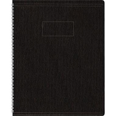 Blueline® EcoLogix Wirebound Notebooks