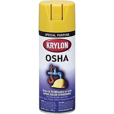 Krylon® 12 oz Aerosol Can Spray Enamels