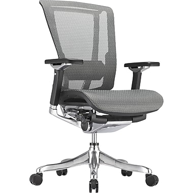 Raynor nefil Pro Smart Motion Mesh Managers Chair