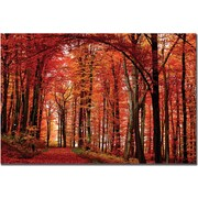 "Trademark Global Philippe Sainte Laudy ""The Red Way"" Canvas Arts"