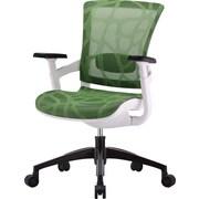 Skate Mesh Ergonomic Chair w/ White Frame