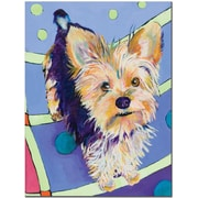 "Trademark Global Pat Saunders White ""Claire"" Canvas Arts"