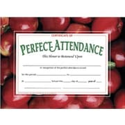 Hayes® Red Border Certificate of Perfect Attendance (H-VA513)