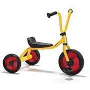 Winther® Duo Tricycle (WIN580)